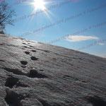 2010-02-21 Rothenhausen 1 © Pekasus1988