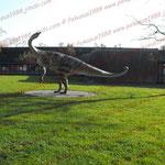 2008-11-14 München - Dino © Pekasus1988