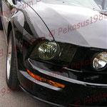 2008-05-16 Überlingen - Ford Mustang GT © Pekasus1988