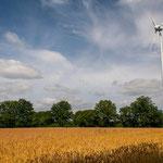 2013-07-19 Rothenhausen - Großes Windrad -Jahreszusammenfassung 2013 Bild 88 (PS CS6)