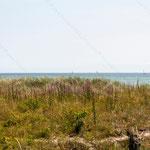 2013-07-07 Ostsee - Meer -Jahreszusammenfassung 2013 Bild 80 (PS CS6)