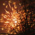 2012-01-01 Berlin -Feuerwerk 1- © Pekasus1988