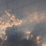 2007-08-07 Berlin © Pekasus1988