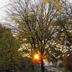 2008-10-21 Rengoldshausen - Sonnenaufgang © Pekasus1988