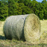 2013-06-07 Rothenhausen - Klee-Gras-Ballen -Jahreszusammenfassung 2013 Bild 50 (PS CS6)