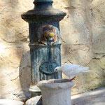 2010-08-25 Spanien - Alicante  - Brunnen © Pekasus1988