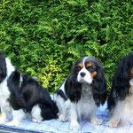 George mit Mama Babette und Uropa Kappa