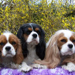 Wergie mit ihren Töchtern Babette und Darina