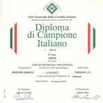 Diploma di Campione Italiano