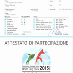 Diploma di 3° Classificato Mondiale 2015