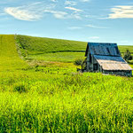 Old Barn in the Palouse, Lee Moore (Photography)