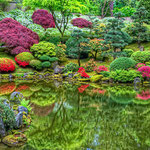 Spring in Japanese Garden, Lee Moore (Photography)