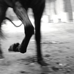 "A mi paso (At my pace) Alejandra Iturrizaga Andrich 31 ½"" x 47"" Limited Edition Photograph 1 of 2 $800"