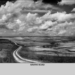 Ravine Road by Daniel Coburn (Photography)