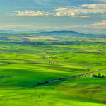 View of Palouse, Lee Moore (Photography)