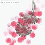 「FlewFlower(pink)」アサコ ミニアルバム「かさなり」CDジャケット用イラストレーション 2010年 画用紙に鉛筆、インク