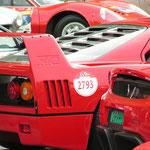 Ferrari Enzo + F40 + 250 GT SWB + 246 GT Dino + 612 Scaglietti