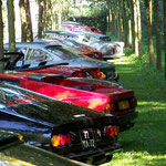 Ferrari 250 GTE + 246 GT + 365 GTC-4 + 512 BB + 275 GTS + 365 GTS-4 + 330 GTC + 250 GT/L + 250 GT SWB + 250 GT Boano + 330 GT 2+2 + 365 GTB-4 + 250 GT SWB + 250 GTO '64