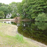 In Langwege dann eine positive Überraschung, der Landkreis Vechta hat einen Teich renaturiert.
