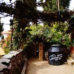 Schön und fast ein bisschen romantisch: Der Weg zu Juanas Haus