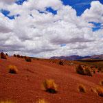 ... rote Sanddünen...
