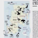 GEO / Oiseaux de Fair Isle (Shetlands), carte et illustrations