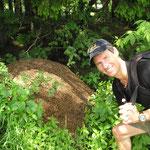 Olli vor einem Ameisenhaufen