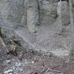 el altar natural (columna) atrás del fuego, se dice que ahí vivió un dragón en la roca (Fluh)
