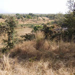 Savane dans la région de Banfora