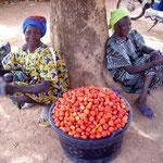 Des fraises en février à Ouaga!