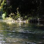 Source de la Guinguette, baignade en eau vive près de Bobo