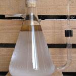 Huiles essentielle de sarriette surnageant l'hydrolat