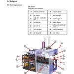 Thermoformanlage (DE/PL)