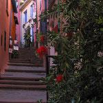 Collioure  © Tous droits réservés - Crédit photo Mr Denis ANGERS