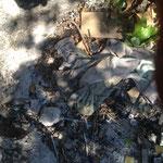 Der Pulli von dem Vorbesitzer flog erstmal in die Feuerstelle.