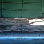 Der Ladeboden ist bis auf ein kleines Stück (welches nicht zu retten ist) mal im Eigenbau neu eingeschweißt worden. Der Blick auf die Seitenwand lässt den Arbeitsaufwand vermuten