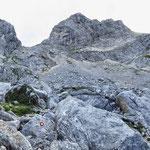 Вид на Lučin vrh, перевал Velika Previja (2351м) и Боботов Кук из долины Valoviti Do