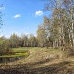 Парк Кусково. Сухой пруд