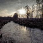 конец ноября 2014. Замерзшие болота Лосиного острова