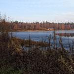 ноябрь 2014. Алексеевский пруд