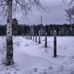 На хуторе. Зима