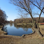 Терлецкий парк, апрель