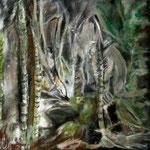 Amitie 50 / 50 Schachtelhalm, bewohnt von Waldwesen