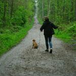 """...hat Shango ein klares """"Nein"""" zum Spaziergang gesagt!"""