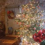 Lieber Weihnachtsmann, ich wünsche mir eine tolle Familie....