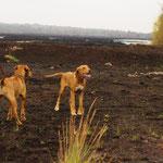 Noch einen gemeinsamen Spaziergang  mit Schwester Manyara und Oma Chenaya
