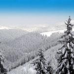 Winter im Schiefergebirge, 1946