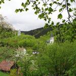 Blick zur Kirche und Burgruine Rauenstein