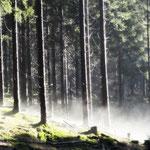Thüringer Schiefergebirge