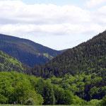 Blick ins Tal des Goldflusses Grümpen